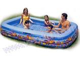 Надувной бассейн INTEX Семейный Аквариум 58485